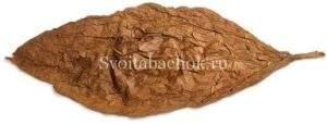Ферментация табака