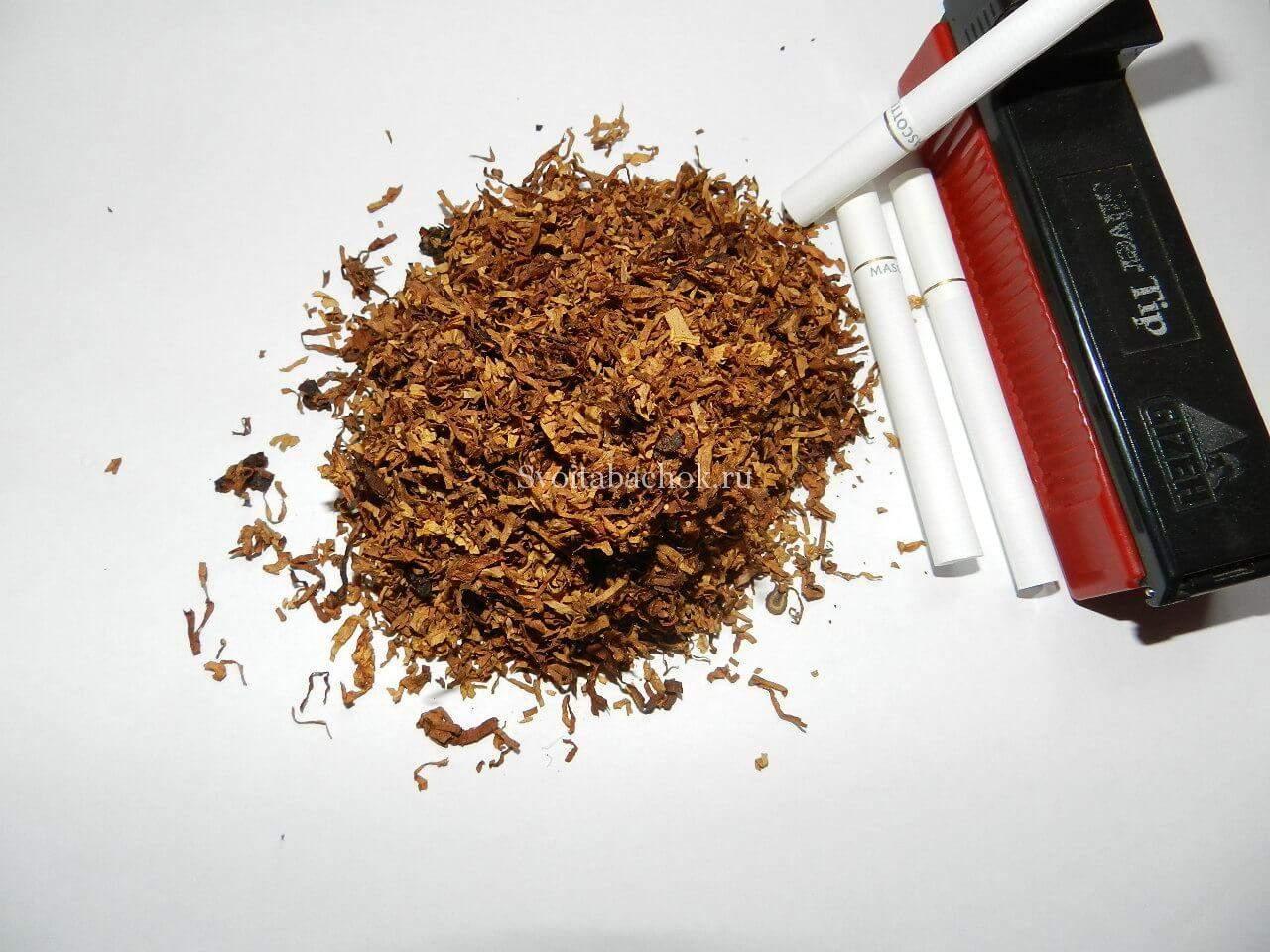Выращивание и обработка табака в домашних условиях 37
