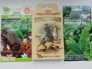 Обзор семян табака